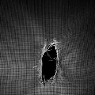 Screen and Window Repair