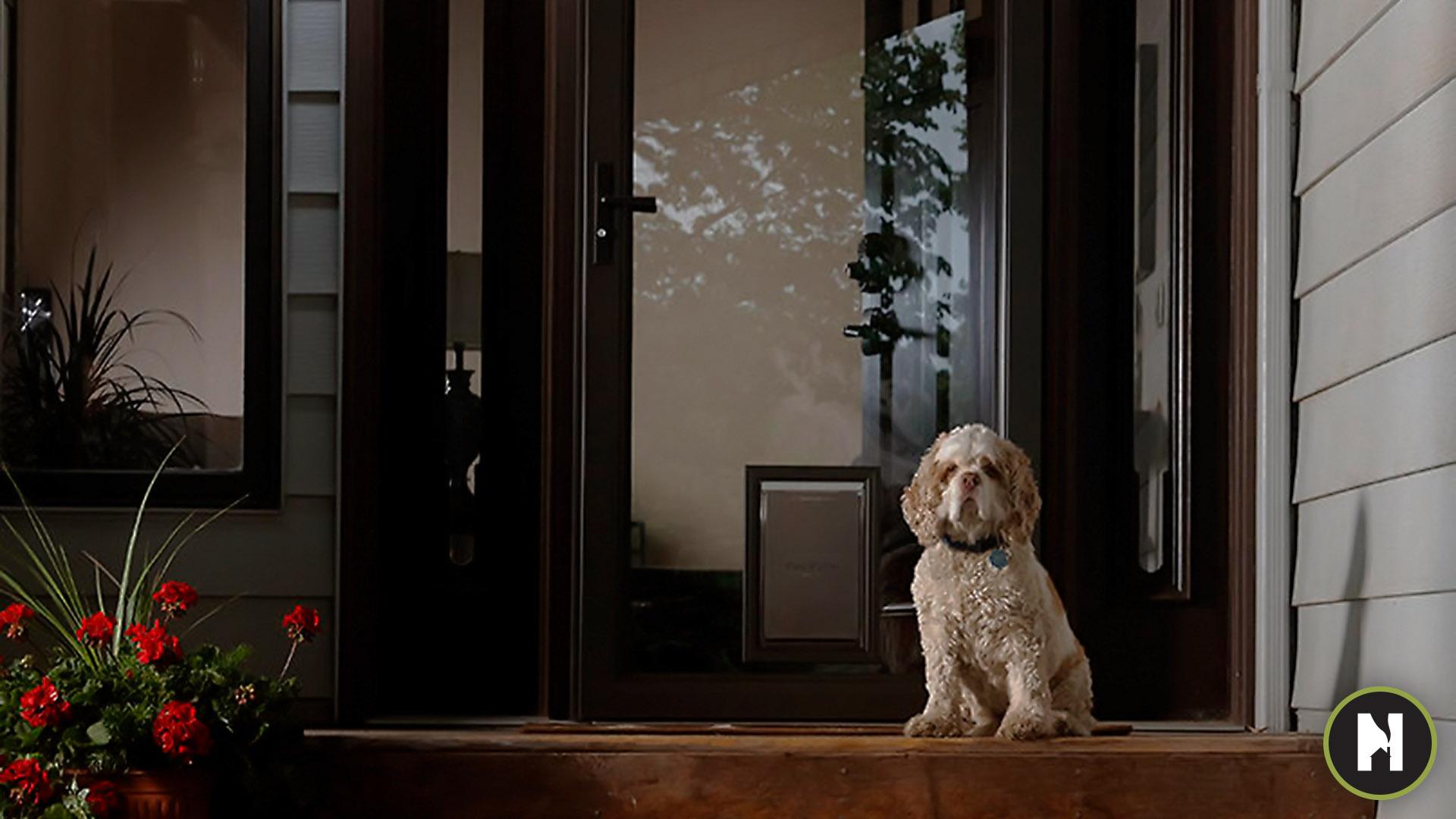 Larson Pet Door